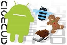 """Năm 2013 – Đón chờ những tính năng """"độc"""" của điện thoại Android"""