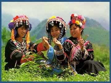 Hanoi–Aptech tổ chức du lịch phượt Văn Chấn – Tú Lệ