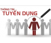 SNS Group tuyển PHP Developer