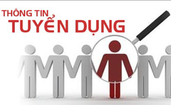 WILLBESOLUTION TUYỂN DỤNG TECH-LEADER