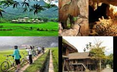 Read more about the article Du lịch Mai Châu đón gió đông về cùng Hanoi- Aptech