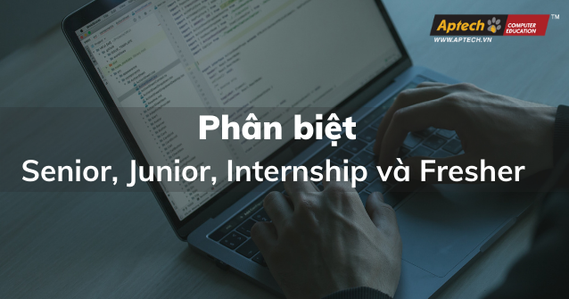 Read more about the article Phân Biệt Senior, Junior, Internship Và Fresher Trong Doanh Nghiệp